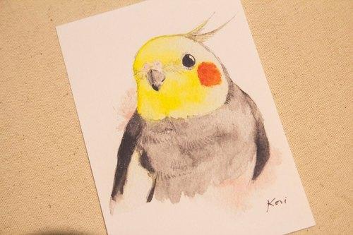 原生玄凤 【日常e】 手绘水彩风格明信片 - birdink