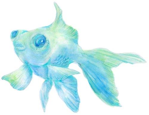 凸眼金鱼贴纸