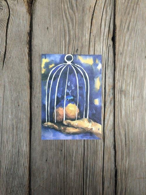 動物 明信片 籠中鳥