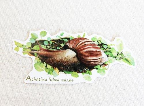 湘 手繪非洲大蝸牛貼紙