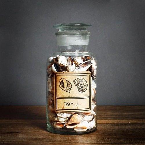 波浪织纹螺【海洋礼物】海螺贝壳艺术雕刻玻璃瓶 订做刻字礼物 生日
