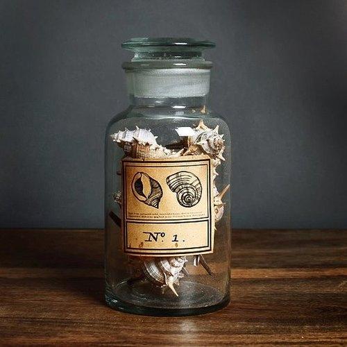 骨螺【海洋礼物】海螺贝壳艺术雕刻玻璃瓶 订做刻字礼物 生日礼物