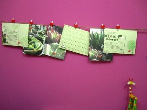 可爱 创意 植物篇明信片 postcard