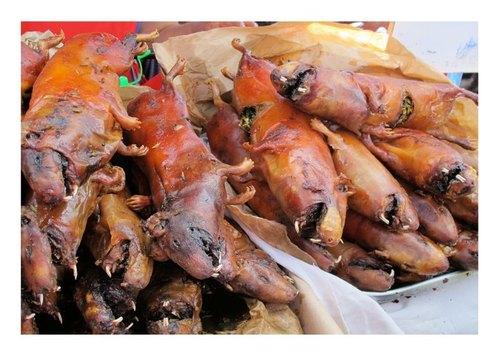 translation 天竺鼠(quechua语:cuy)在秘鲁是个大家都知道的家乡美食