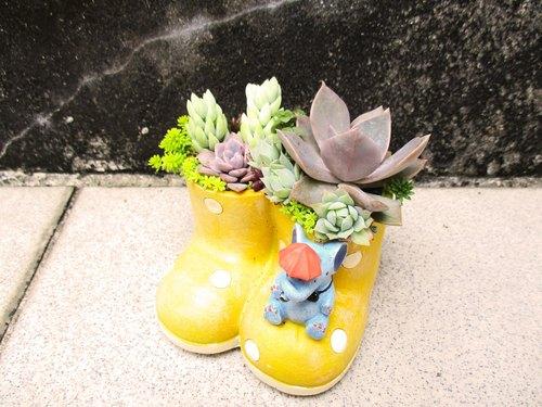 可愛多肉植物組盆黃色大象小雨靴~