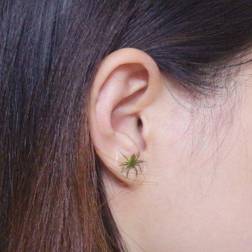 同事: 欵..你耳朵爬出小蜘蛛了【偽】耳環/耳飾