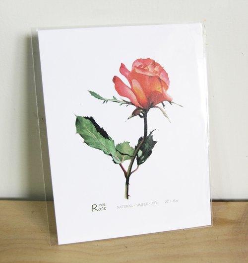 湘 手绘明信片 玫瑰