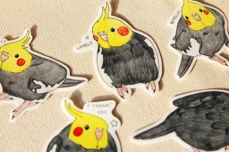 Native species cockatiels painted waterproof sticker set
