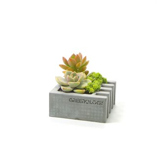 Greenology Cement Flower/ Ashtray