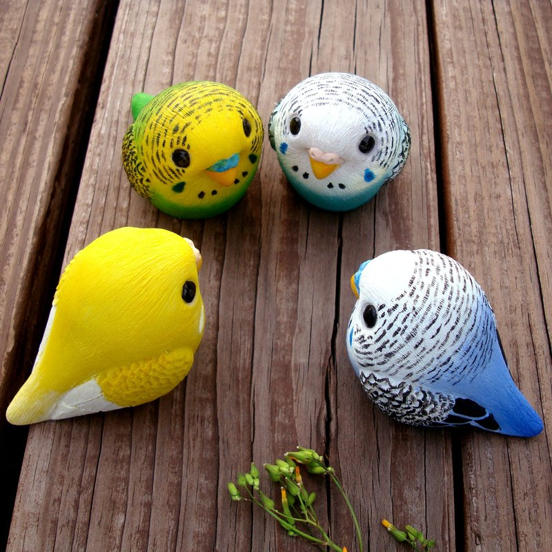 Healing Round Rolling Series - Budgerigar Budgies