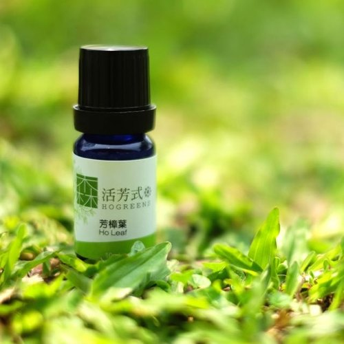 Taiwan Ho Leaf Essential Oil