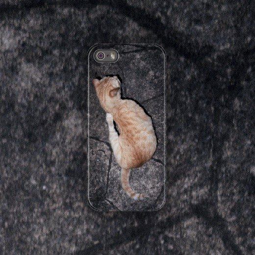 Cat two-cat two / 2014 / phone case