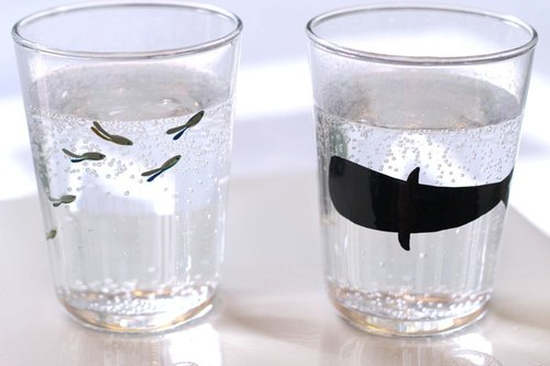 Whale § glass cup