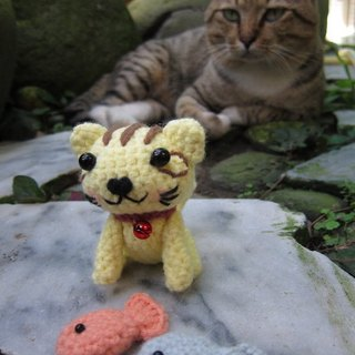 Tabby cat and fish