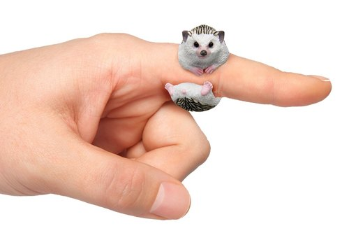 CLiNG animal ring