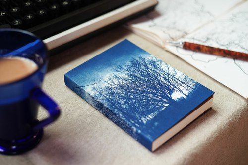 Handmade cyanotype notebook - Northland sun