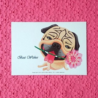 Pug Postcard-Best Wishes