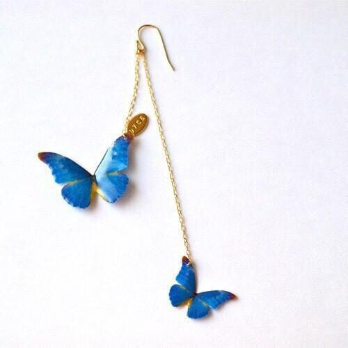 morpho Pierce
