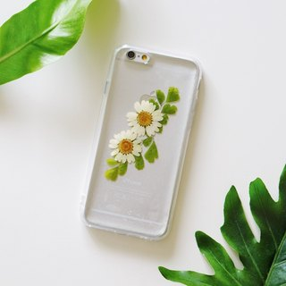 Pressed Flowers Phone Cases - Daisy and Fan-leaved Maidenhairf Collection