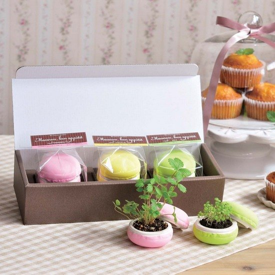 Sweet Garden - Macaroon Macarons dessert pot / gift box (three in a group)