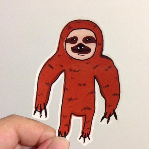 571 / amiable sloths