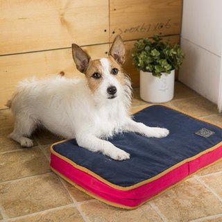 Lifeapp Dirty Pet Sleeping Pad XS (Red & Blue) W45 x D30 x H5 cm