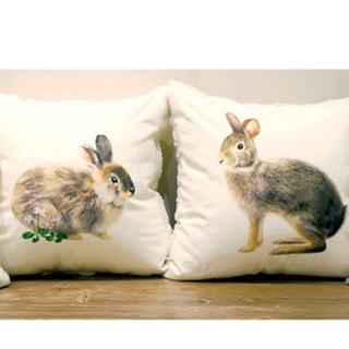 Taiwan hare pillow four pieces