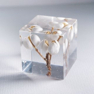 White fruiting branches - three-dimensional square dried flowers decoration