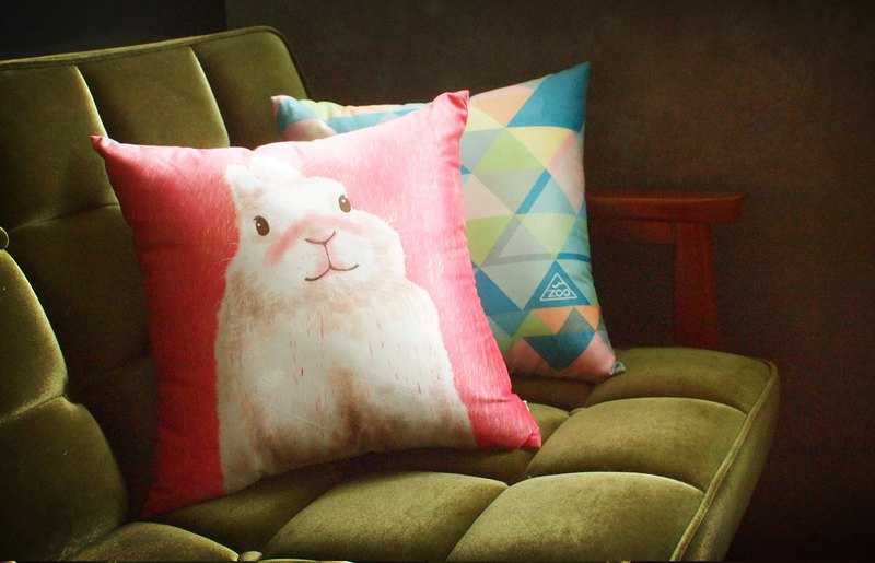 / Animal good friend / Anan white rabbit square afternoon pillow pillow with pillow