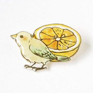 04 GRAPEFRUIT & BIRD BROOCH