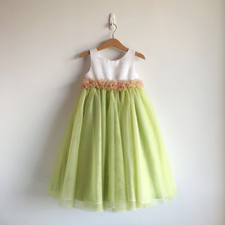 Pastel Green Empire Waist Netting Dress