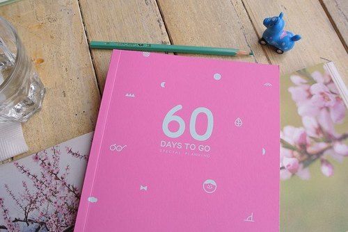 60 days to go day plan this - Pink