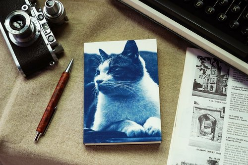 Handmade cyanotype notebook - Cat series - gaze