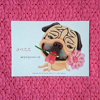 Pug Postcard-Flowers for you