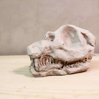 Dinosaur skull / bones / cement decorations / Industrial Wind