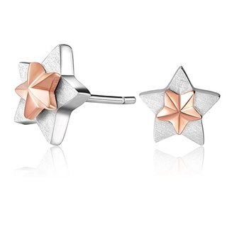 925 Silver Star Earrings