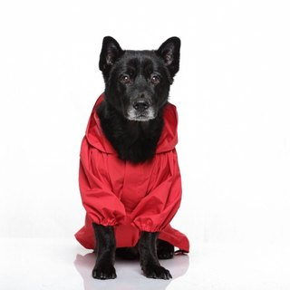 Paris Rainbow ~ waterproof raincoat dog function waterproof Gore-Tex fabric SGS test grade nontoxic Carmine