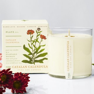 KOBO series of non-genetically modified soybean seeds fragrance candles - fragrance Calendula