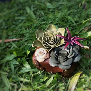 Fading Mist Leather Succulents Music Box
