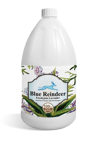 Blue Reindeer natural eucalyptus lavender essence Soothing Shampoo itching