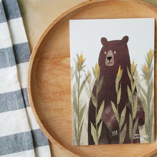 Postcard Bear Corn