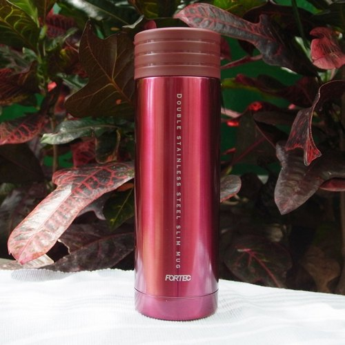 Handy Bottle readily vacuum thermos 300ml- red (Japan Design)
