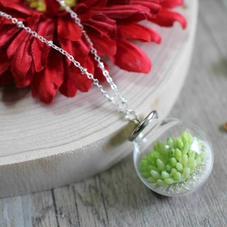 Artificial fat plant glass ball necklace--【fatty traveling plant】 no shipment fees on chinese valentine's