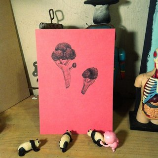 Daily postcard, leaflet, broccoli pink
