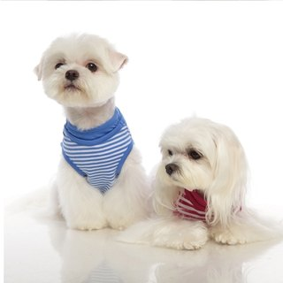 Beach Tee false double pinstripe vest pet clothes -2 color