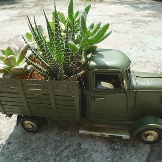 Travel _ antique style small cargo Card (green) _ cactus x Succulents