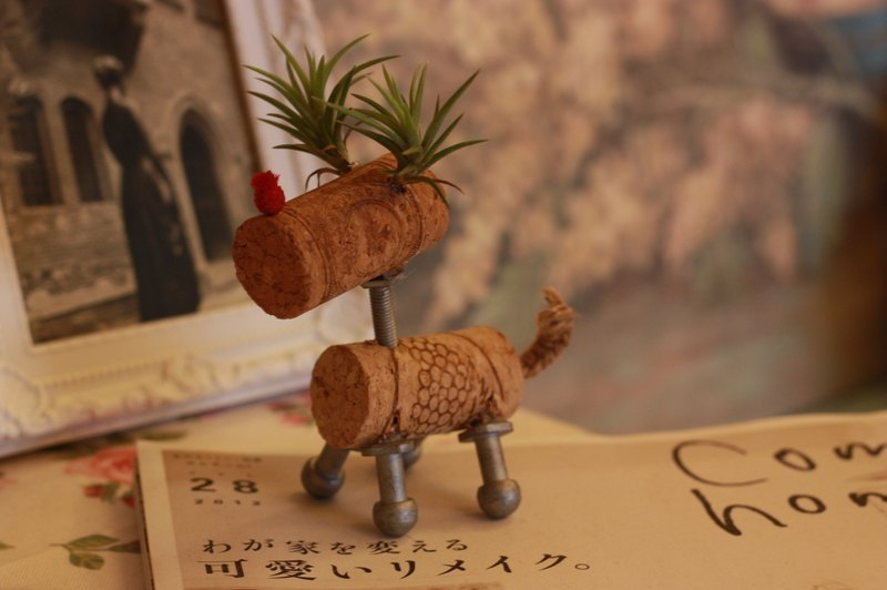 Tillandsia elk shape of cork