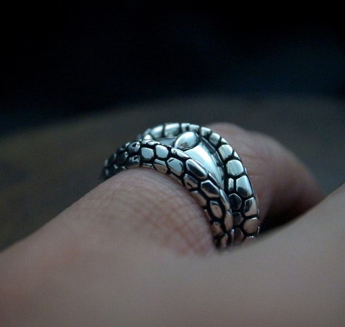 【dark. As the silver ring (serpentine / scales / cold-blooded animals / eyes / tail ring / wide ring)