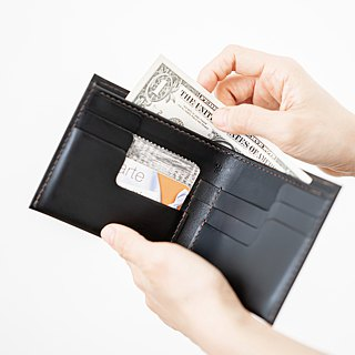 Passport Cover hand-stitched vegetable tanned leather passport holder / hand-held