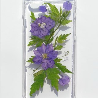 Pressed flower case, iphone 6, iphone 6S, Delphinium, Part 2